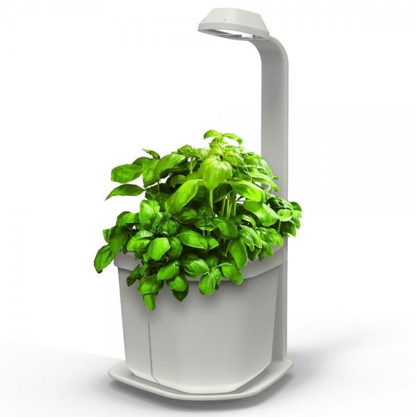 Kitchen Garden Pots: 20 Objets Pour Un Jardin Connecté