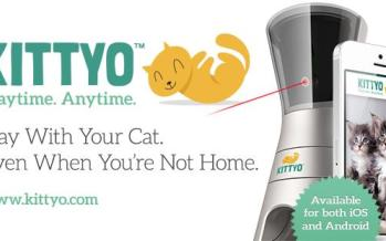 Kittyo, un objet connecté pour interagir avec son chat