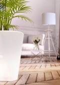 MEG, le pot de fleurs connecté qui illumine votre intérieur