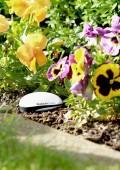 Koubachi Plant Sensor 2 : Un coach jardinier au pied du sapin !
