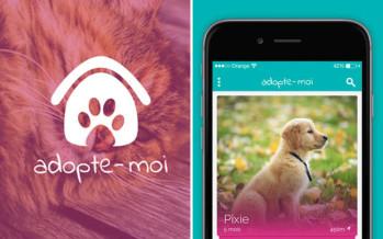 «Adopte-moi», le Tinder pour adopter ses animaux !