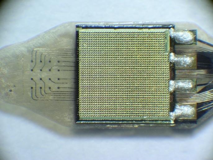 RetinaImplant Microchip