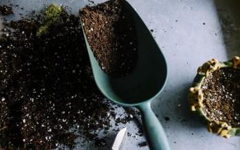 Gro, le jardin qui sait mieux jardiner que vous