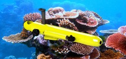 COTSBot, le robot qui tue pour sauver le corail