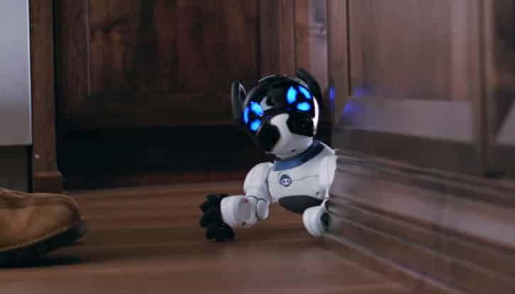Robot chien CHiP