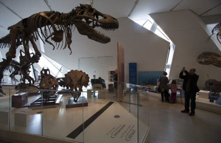 TREX musee Ontario
