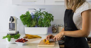 Quoi de mieux qu'un potager connecté pour cuisiner ?
