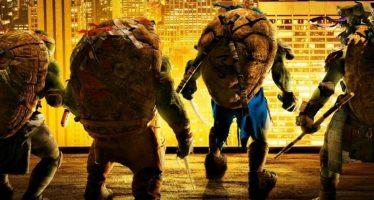 Freddy, la tortue nouvelle génération