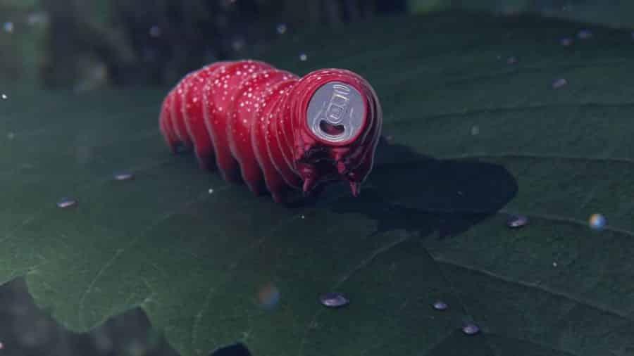 publicite et reves chenille coca cola