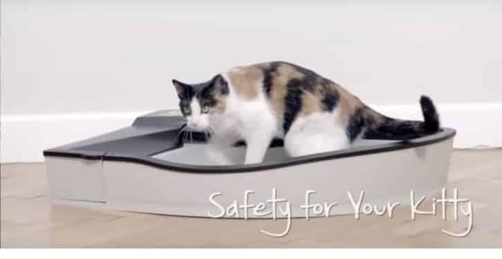 litiere chat intelligente