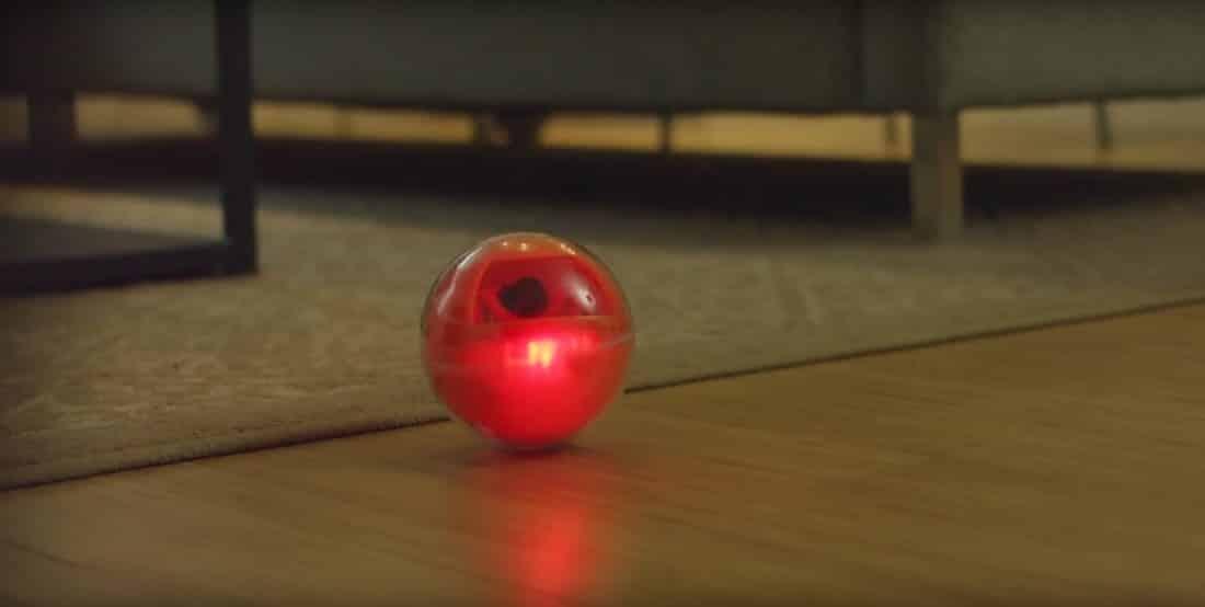 Playdate : une balle de jeu connectée pour animaux de compagnie