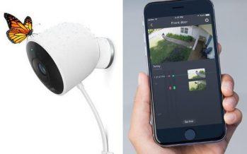 Nest Sightline : l'application qui trie les images de surveillance
