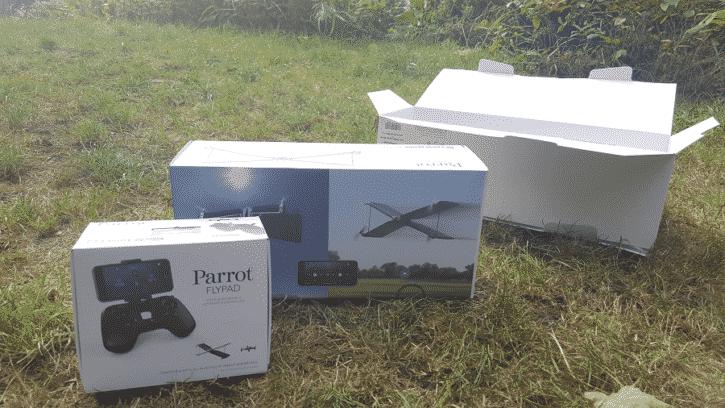 parrot swing carton