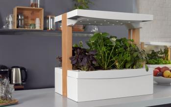 Fresh Square : le jardin d'intérieur connecté accessible à tous