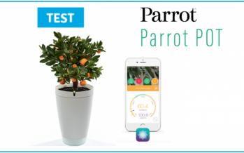 [TEST] Parrot pot, le pot de fleur connecté qui a la main verte