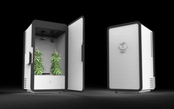 LEAF : Un frigo connecté spécialisé dans le cannabis médicinal