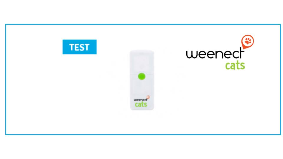 test weenect cats une balise gps animaux chats