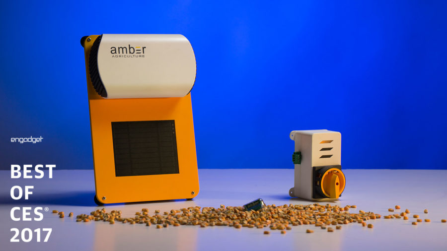 amber-agriculture