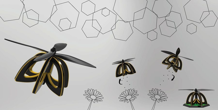 plan bee drone abeille