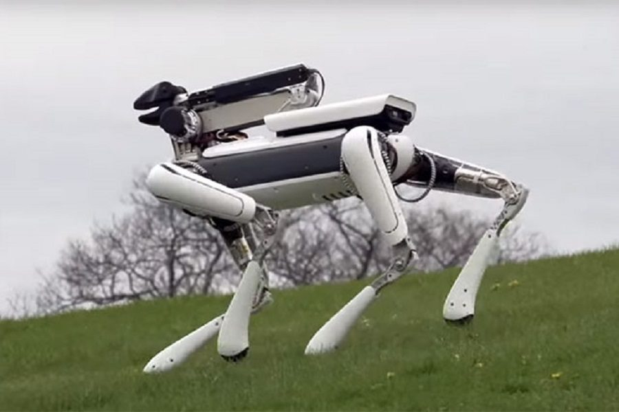 spot mini robot domestique