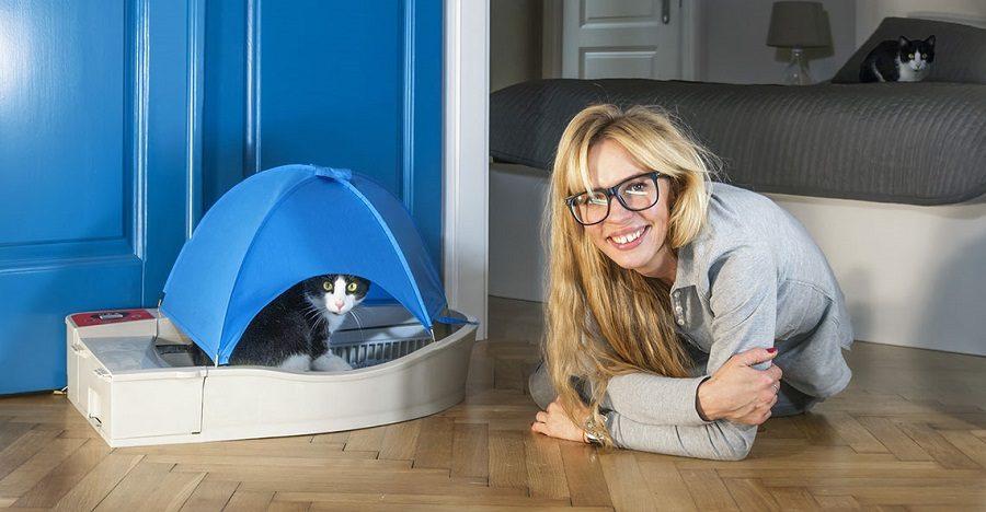 chat connecté litière