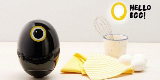 hello egg assistant cuisine