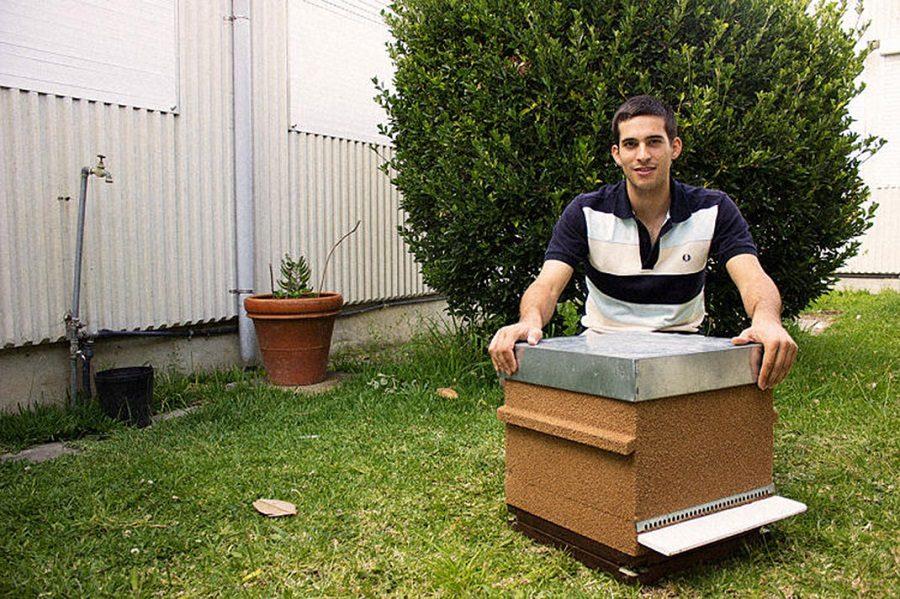 smart hive ruche connectée