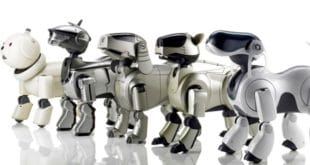 chien robot, robot canin, sony aibo, ia, intelligence artificiel, ia dog