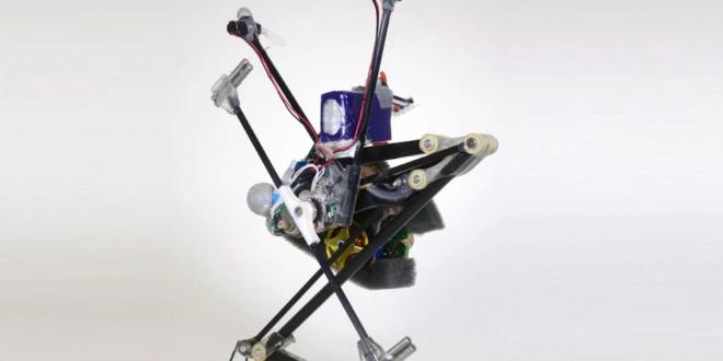 robot sauteur