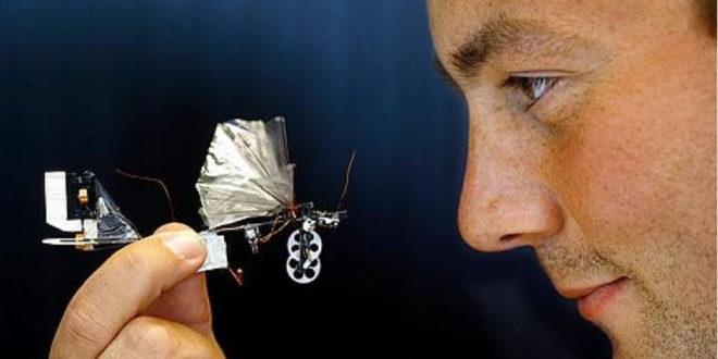 Delfly Nimble robot volant insecte