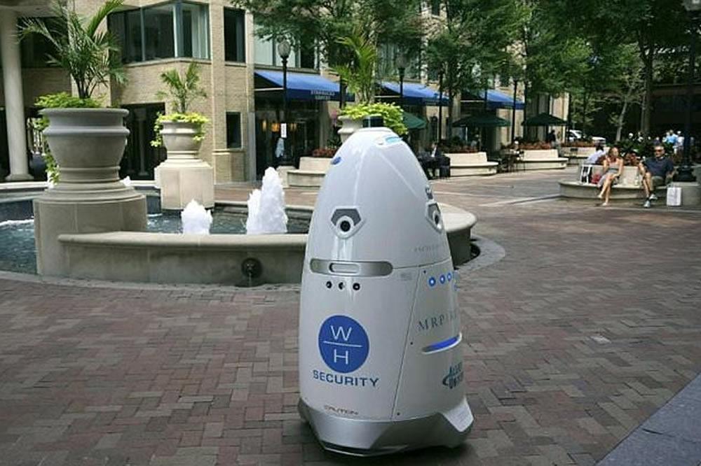 Robot Steve suicide