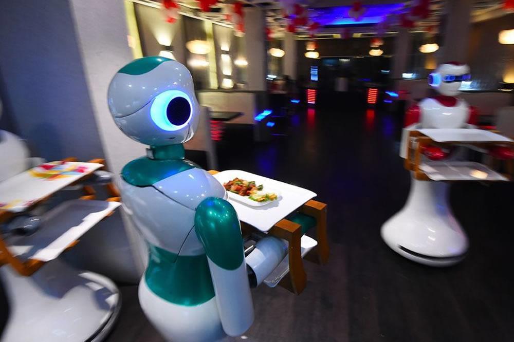 Robot serveur Ginger