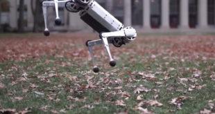 mini cheetah mit robot flip arrière