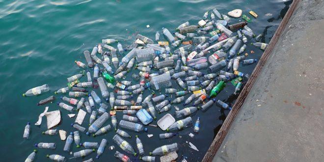 Benoît lecomte va nager à travers ce type de déchets plastiques