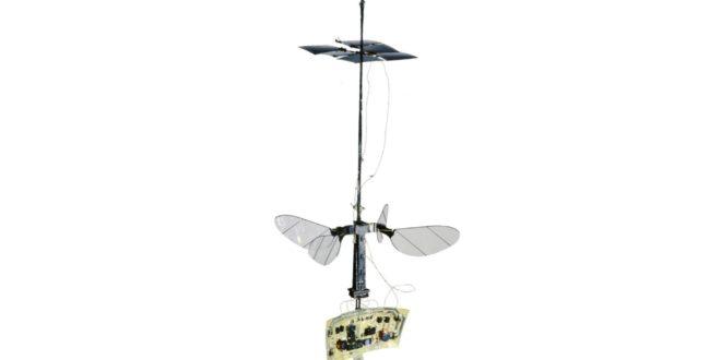 Robobee x-wing, un robot insecte volant à l'énergie solaire