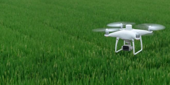 drone DJI P4 Multispectral pour l'agriculture