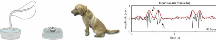 fonctionnement du capteur de santé pour animaux des chercheurs de l'Imperial College de Londres