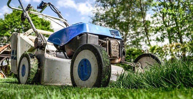 Top 6 des objets connectés pour jardiner
